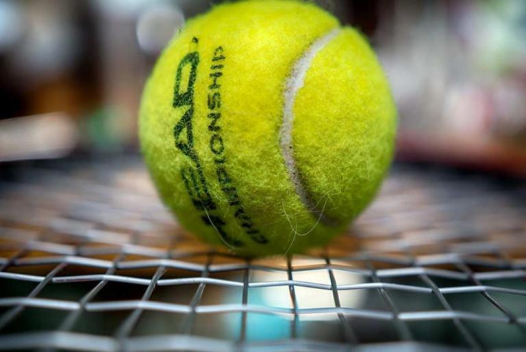 tenis loptica