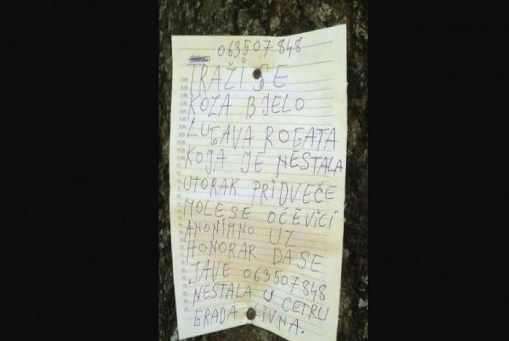 oglas drvo