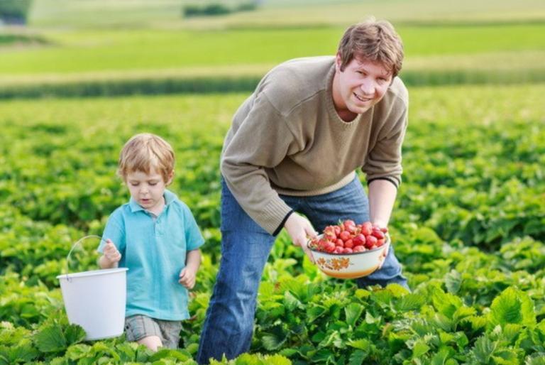poljoprivrednik uzgajivac